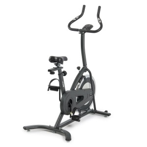 Alpine Exercise Bicycle With LCD Screen