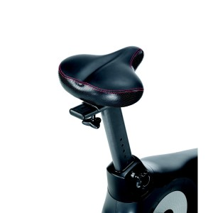 Seat On The Schwinn 170 Upright Bike