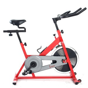 Sunny SF-B1001 Indoor Cycling Bike (Red)